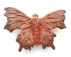 The HEXAPODA Collection - Comma Butterfly Brooches & Pendants