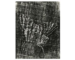 Butterfly Pinned Wood Block Print