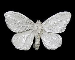 Cabbage White Butterfly Brooch