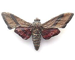 The HEXAPODA Collection - Sphinx Moth Brooches & Pendants